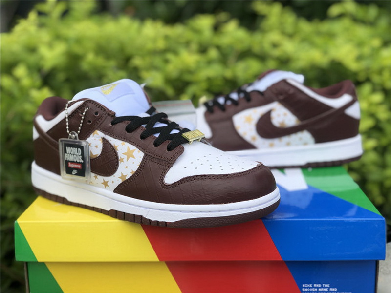 Authentic Supreme x Nike SB Dunk Low Brown