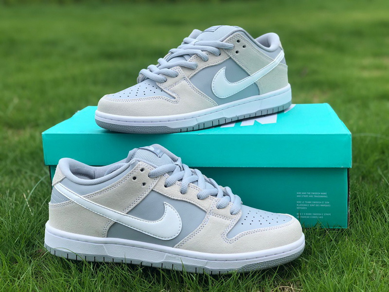 Authentic Nike Dunk SB Low TRD AR0778-110